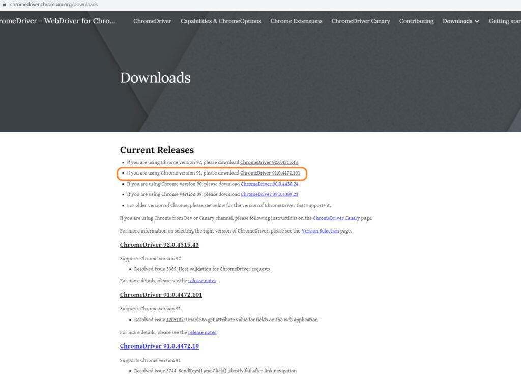 Chrome Webdriverをダウンロード手順1